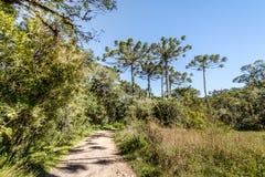 Hiking Trail of Itaimbezinho Canyon at Aparados da Serra National Park - Cambara do Sul, Rio Grande do Sul, Brazil. Hiking Trail of Itaimbezinho Canyon at Royalty Free Stock Images