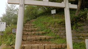Hiking trail in Japan. Passing a tori gate on a hiking path on Mount Nantai stock footage