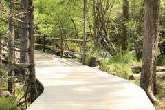 Hiking trail on jiuzhaigou national park of china Royalty Free Stock Photo
