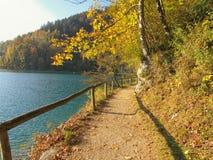 Hiking trail at Lake Wolfgangsee stock images
