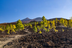 Hiking trail leading through volcanic landscapes Royalty Free Stock Photography
