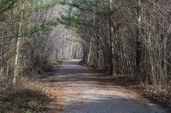 Hiking trail leading the way stock photo