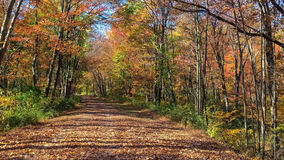 Hiking Trail Long Valley Royalty Free Stock Photos