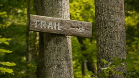 Hiking Trail Marker Sign in a Serene Forest stock footage