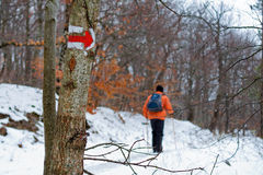 Hiking trail marker on the tree Stock Images