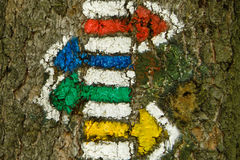 Hiking trail marks arrows on the tree Stock Image