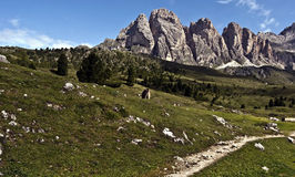 Hiking trail with meadow and panorama of Odle mountain group with Grosse Fermeda peak in Dolomites Stock Photography