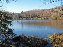 Trout Lake. A hiking trail at Moses Cone Memorial Park near Blowing Rock, North Carolina leads to small, but scenic, Trout Lake Royalty Free Stock Images