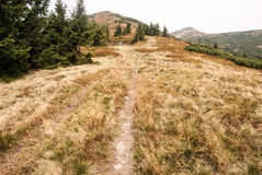Hiking trail on mountain meadow in autumn Mala Fatra mountains in Slovakia Stock Photo