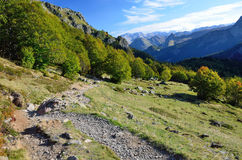 Hiking trail on the mountain slope Stock Images