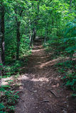 Hiking Trail in the Mountains. Hiking trail located in the beautiful Blue Ridge Mountains of Virginia, USA royalty free stock image