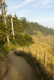 Hiking Trail Oregon Stock Photos