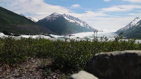 Hiking trail overlooking Whittier Glacier, Alaska, USA. Hiking trail overlooking Whittier Glacier amonst lush vegetation and snow capped mountains, Alaska, USA stock footage