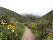 Hiking trail through park Stock Photography