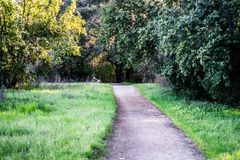 Hiking trail in the park in spring. It was taken in Spring in California Park Royalty Free Stock Photo