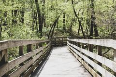 A hiking trail royalty free stock photography
