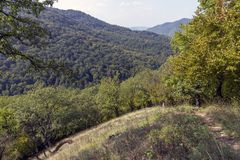 Hiking trail. In the Pilis mountains in Hungary stock photography