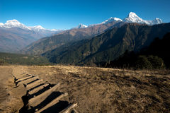 Hiking Trail on the Poon Hill Circuit, Nepal Stock Photos