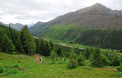 Hiking trail on ptarmigan cirque. Summer view of winding hiking trail on alpine meadows at ptarmigan cirque, kananaskis country, alberta, canada Stock Image