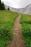 Hiking trail on ptarmigan cirque. Summer view of winding hiking trail on alpine meadows at ptarmigan cirque, kananaskis country, alberta, canada Royalty Free Stock Image