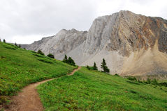 Hiking trail on ptarmigan cirque. Summer view of winding hiking trail on alpine meadows at ptarmigan cirque, kananaskis country, alberta, canada Stock Photos