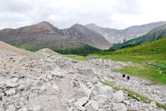 Hiking trail on ptarmigan cirque. Summer view of winding hiking trail on alpine meadows at ptarmigan cirque, kananaskis country, alberta, canada Royalty Free Stock Images