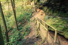 Hiking trail in Red River Gorge stock images