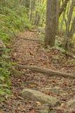 Hiking Trail by Roaring Run Creek Royalty Free Stock Photos