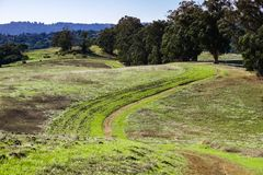 Hiking trail on rolling green hills, Arastradero Preserve, Palo Alto, San Francisco bay area, California stock photo