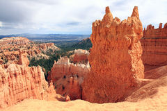 Hiking Trail Scenery in Bryce Wilderness Royalty Free Stock Photography