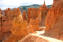 Hiking Trail Scenery in Bryce Wilderness Stock Image