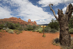 Hiking Trail Sedona Stock Images