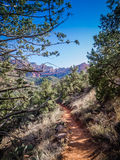 Hiking Trail Sedona. One of many hiking trails in the hills of Sedona.  Very narrow Royalty Free Stock Images