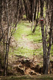 Hiking trail sign. European hiking trail sign at the entry of the trail Stock Photography