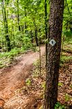 Hiking trail sign on the forest Stock Photography