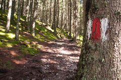 Hiking trail sign Royalty Free Stock Photos