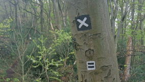 Hiking trail sign on a tree stock footage