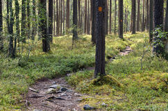Hiking trail with signs. Royalty Free Stock Photos