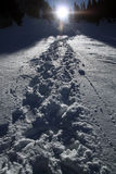 Mountain snow trail. Hiking trail in snow Royalty Free Stock Images