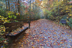 Hiking Trail. Trail at South Mountains State Park in the fall Royalty Free Stock Images