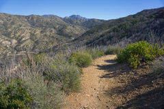 Hiking Trail in Southern California Stock Photography