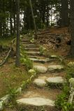 Hiking Trail Stairs. A stone stairway on a wooded hiking trail at Wolf's Neck State Park in Freeport, Maine Royalty Free Stock Photography