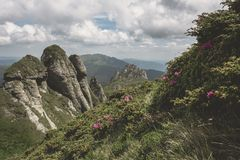 Ciucas Mountains. Hiking trail and strange rock formations in Ciucas Mountains Royalty Free Stock Photography