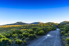 Hiking trail during sunrise at volcanic area of Reunion Island Stock Photography