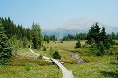 Hiking trail in sunshine Stock Photography