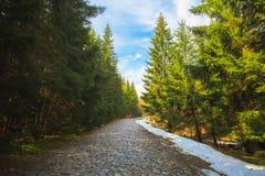 Hiking trail in Tatra mountains, Poland Royalty Free Stock Photo