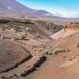 Hiking trail at Tenerife, Canary Islands Stock Images