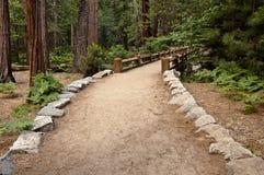 Free Hiking Trail To A Wooden Bridge Stock Photo - 17094710