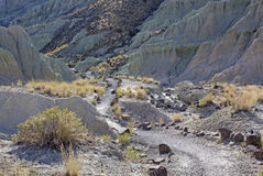 Hiking Trail in To Blue Basin John Day Oregon Stock Photos