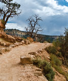Hiking trail to the bottom of Grand Canyon Royalty Free Stock Images